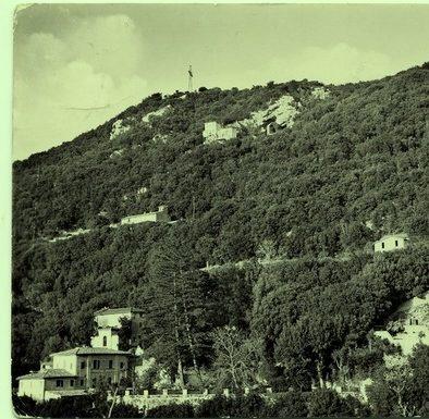 """""""Febbre dell'oro"""" sul Monteluco"""