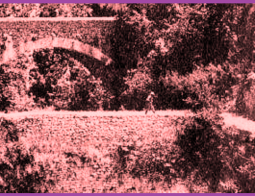 Biselli, sul ponte somari a senso unico alternato