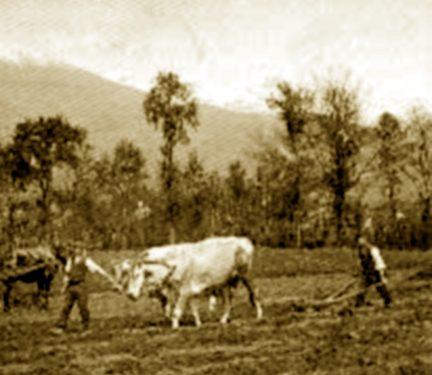 """A Moiano la """"Casa"""" dei contadini e braccianti"""