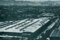 1961, con la Terninoss nasce il sito degli acciai speciali