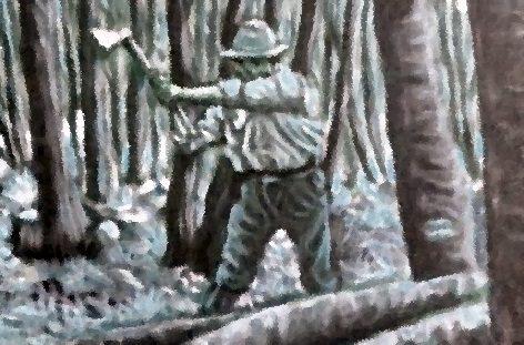 Spoleto 1950: nel tronco di una quercia un tesoro e le ossa di un neonato