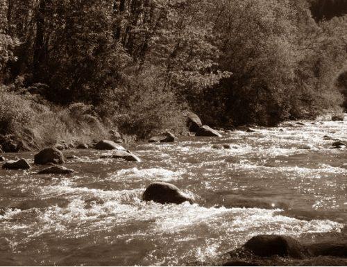 Ficulle, 1949: tre pastori annegati per salvare una pecora