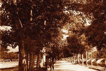 Foligno 1893: parapiglia ai Canapè, denunciati quattro repubblicani